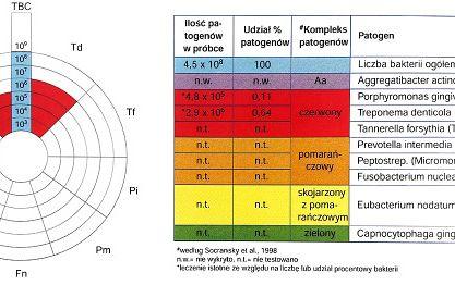 Fot. 2. Wynik badania bakteriologicznego PET Standard